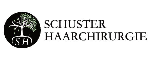 Schuster Haarchirurgie